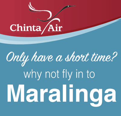 Chinta Air Flights ad